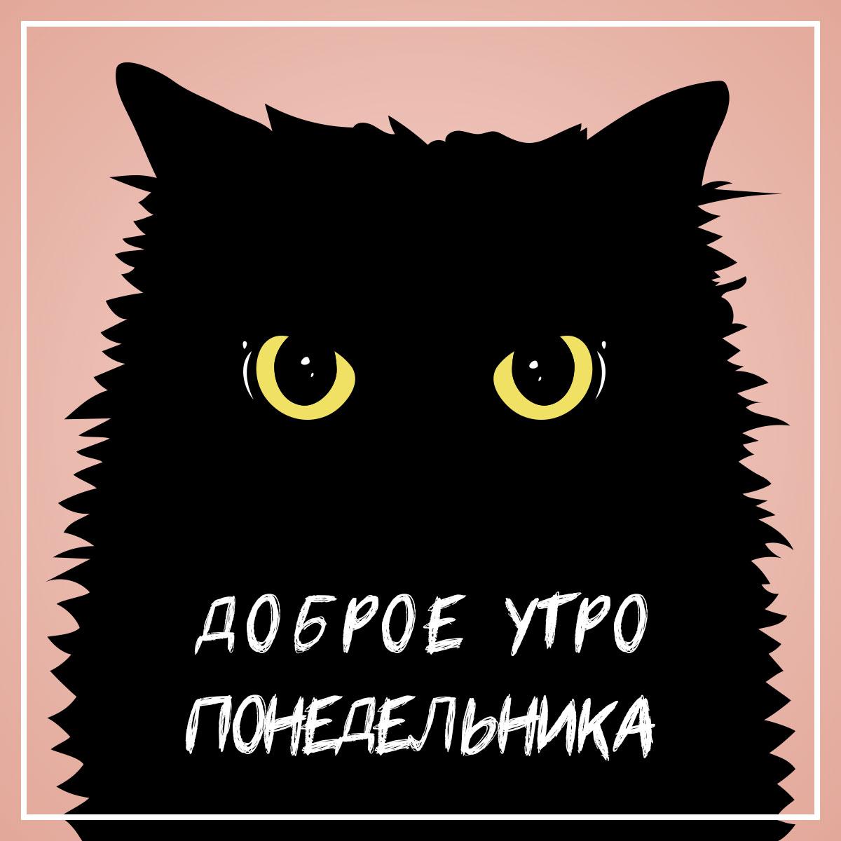 Картинка с надписью доброе утро понедельника и чёрным котом.