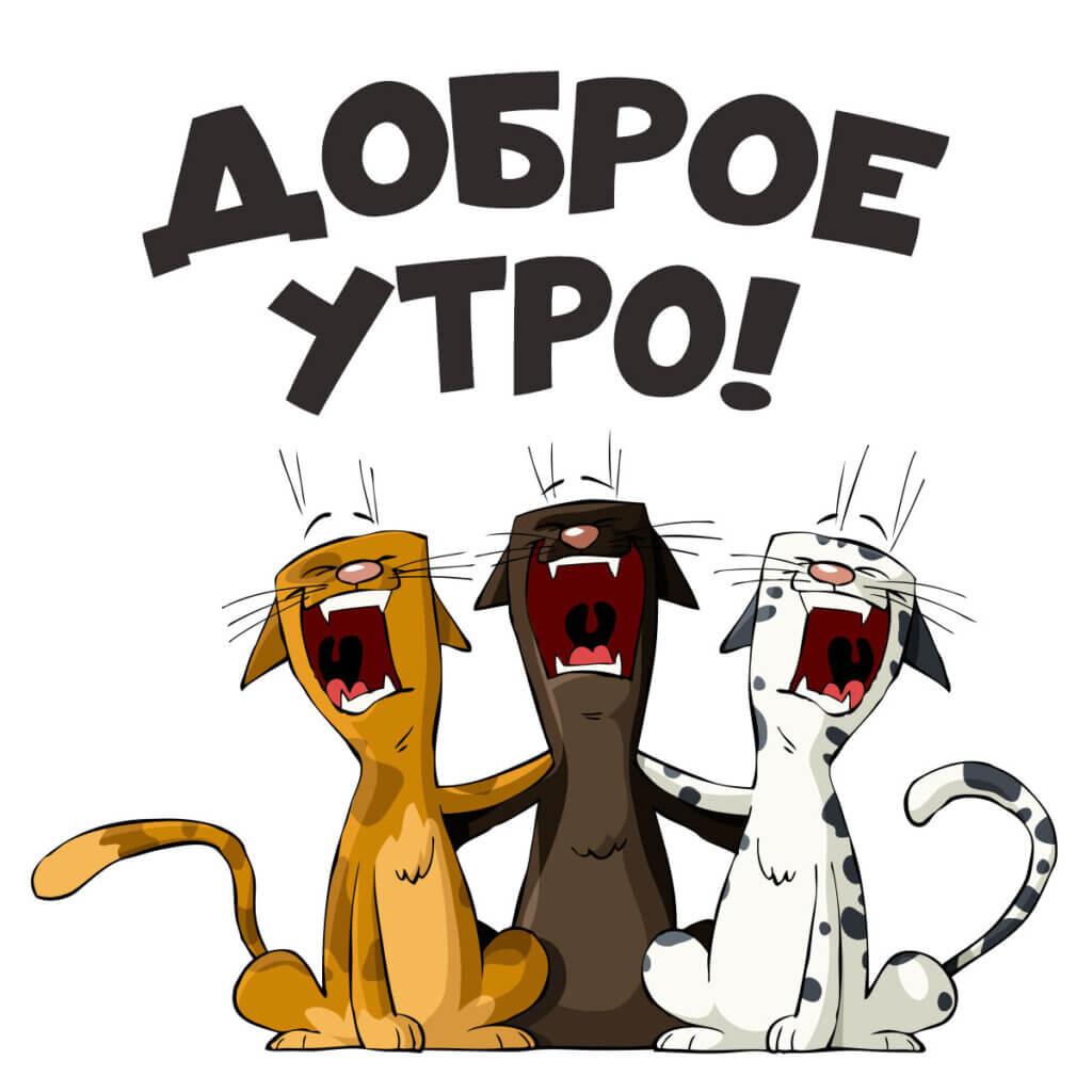 Картинка с надписью доброе утро с юмористическим рисунком трёх кричащих ктов.