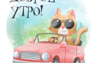 Картинка с надписью доброе утро: котик в круглых солнечных очках едет в красной машине с открытым верхом.