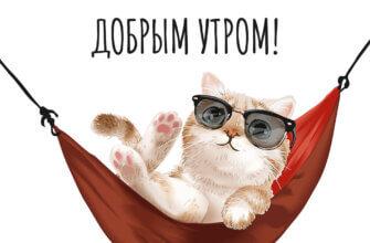 Картинка надписью с воскресным добрым утром: кот в солнечных очках лежит в гамаке.
