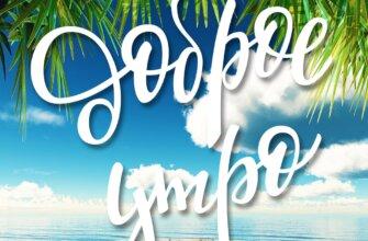 Картинка с надписью доброе утро на летнем пейзаже с дерявянным настилом в море и зелёными листьями пальмы.