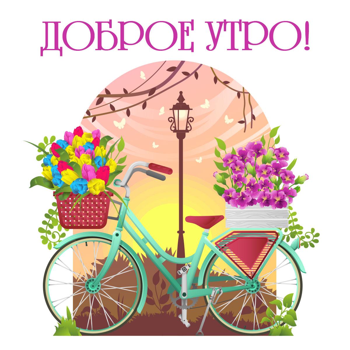 Велосипед с корзиной тюльпанов под надписью доброе утро!