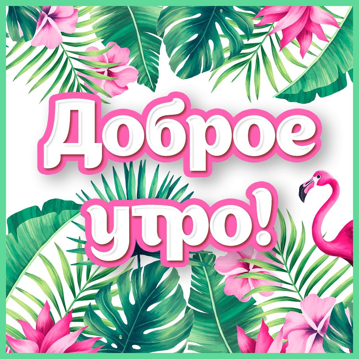 Картинка - пожелание доброе утрос розовым фламинго и зелёными тропическими листьями.