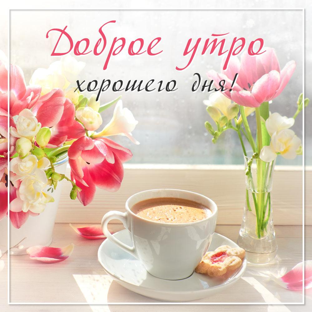 Фото с цветами на доброе утро и чашкой кофе на блюдце с печеньем.