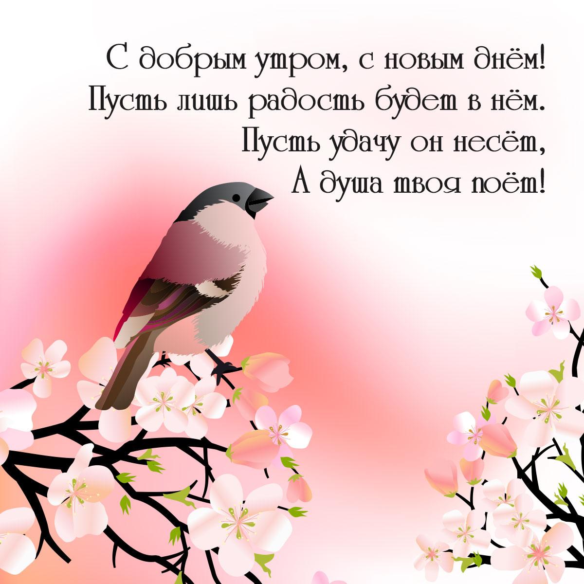 Картинка с добрым утром новым днем с певчей птицей на цветущих ветках и розовым фоном с текстом стихов.