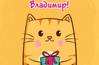 Открытка с днем рождения владимир с рисунком кота.