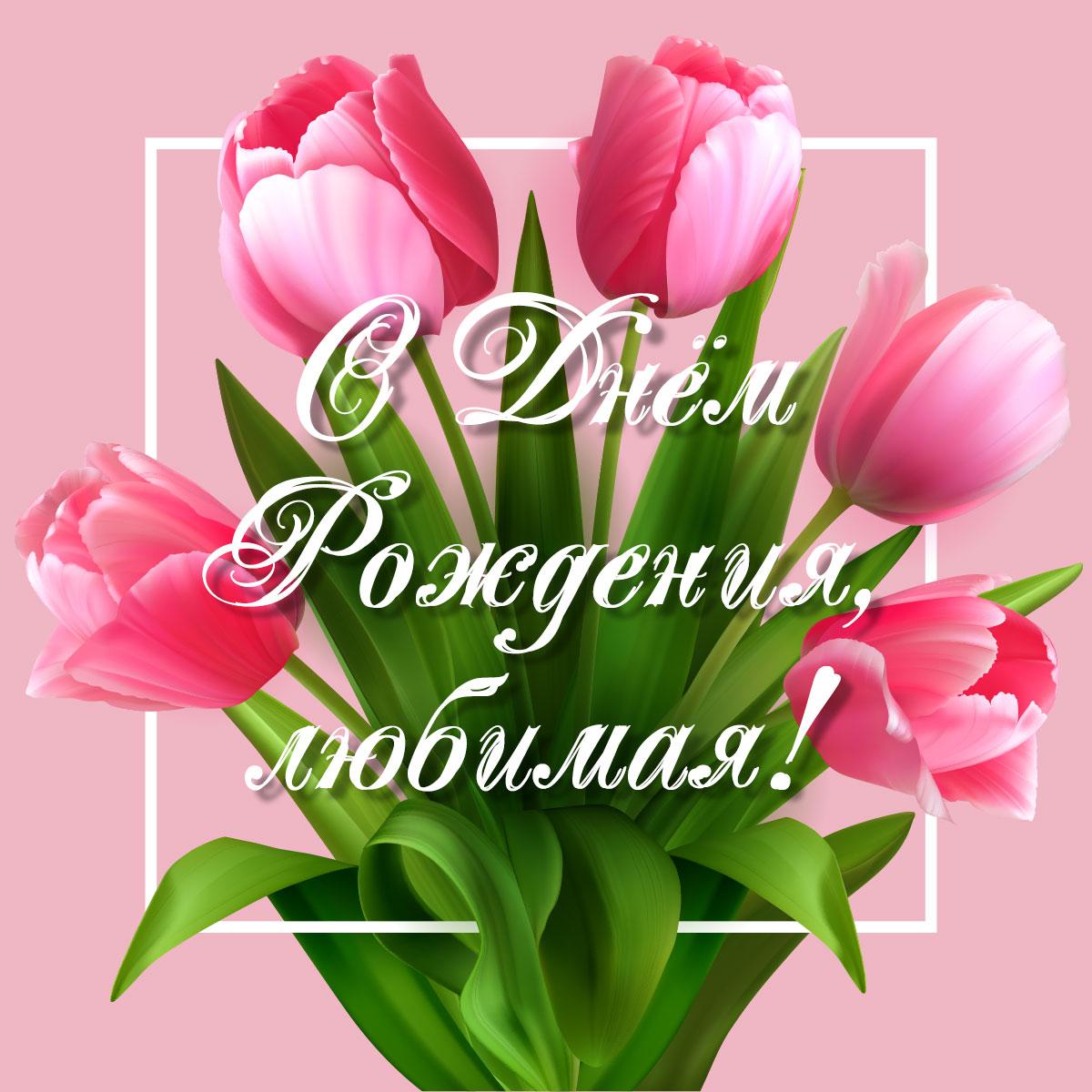 Картинка с текстом с днем рождения любимая на розовом фоне с букетом тюльпанов с зелёными стеблями и листьями.