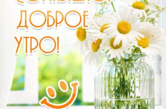 Фото с надписью солнышко доброе утро с ромашками в вазе.