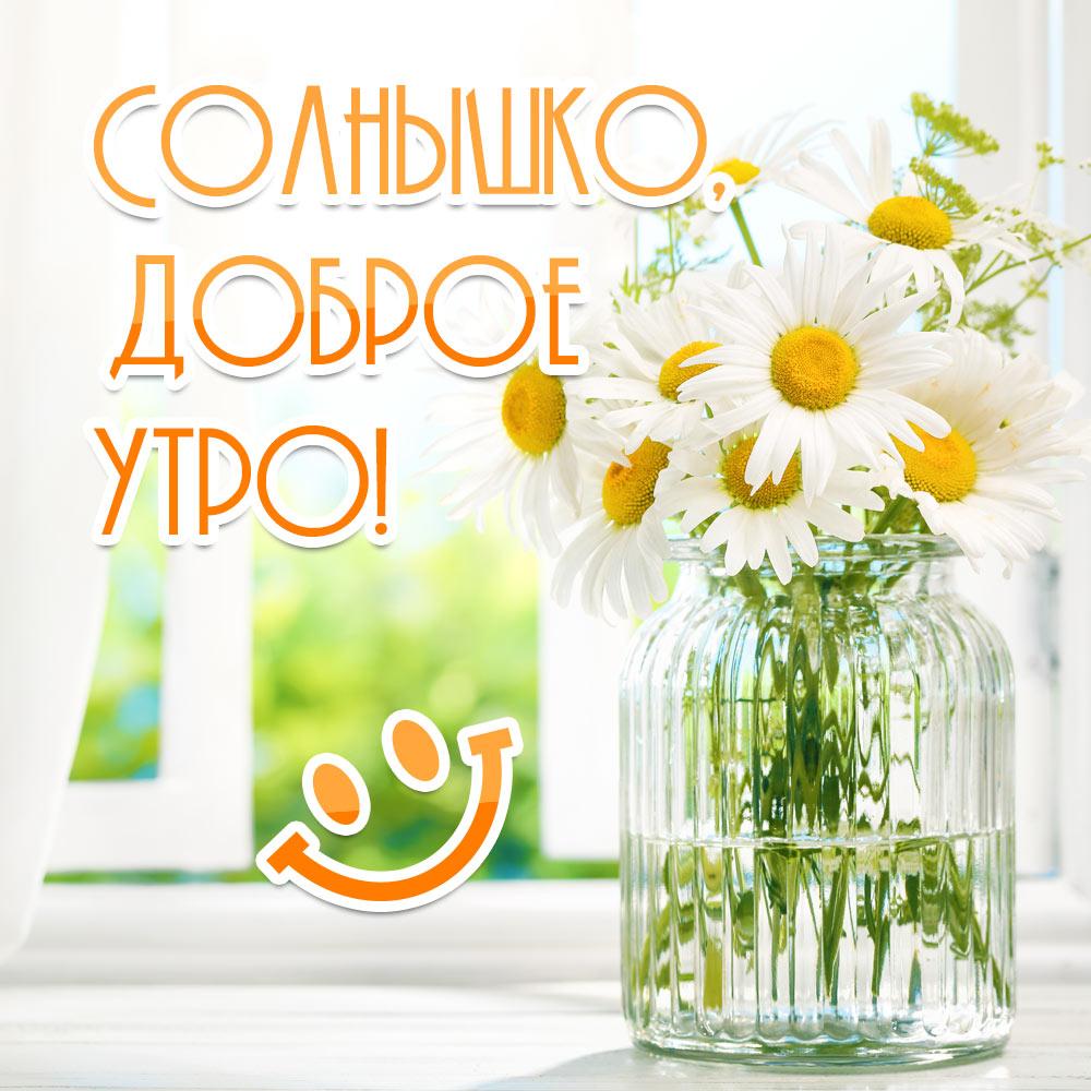 Фото с ромашками в вазе и надписью солнышко доброе утро!
