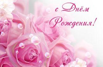 Фото с днём рождения женщине красивые розы Центифолия с текстом.