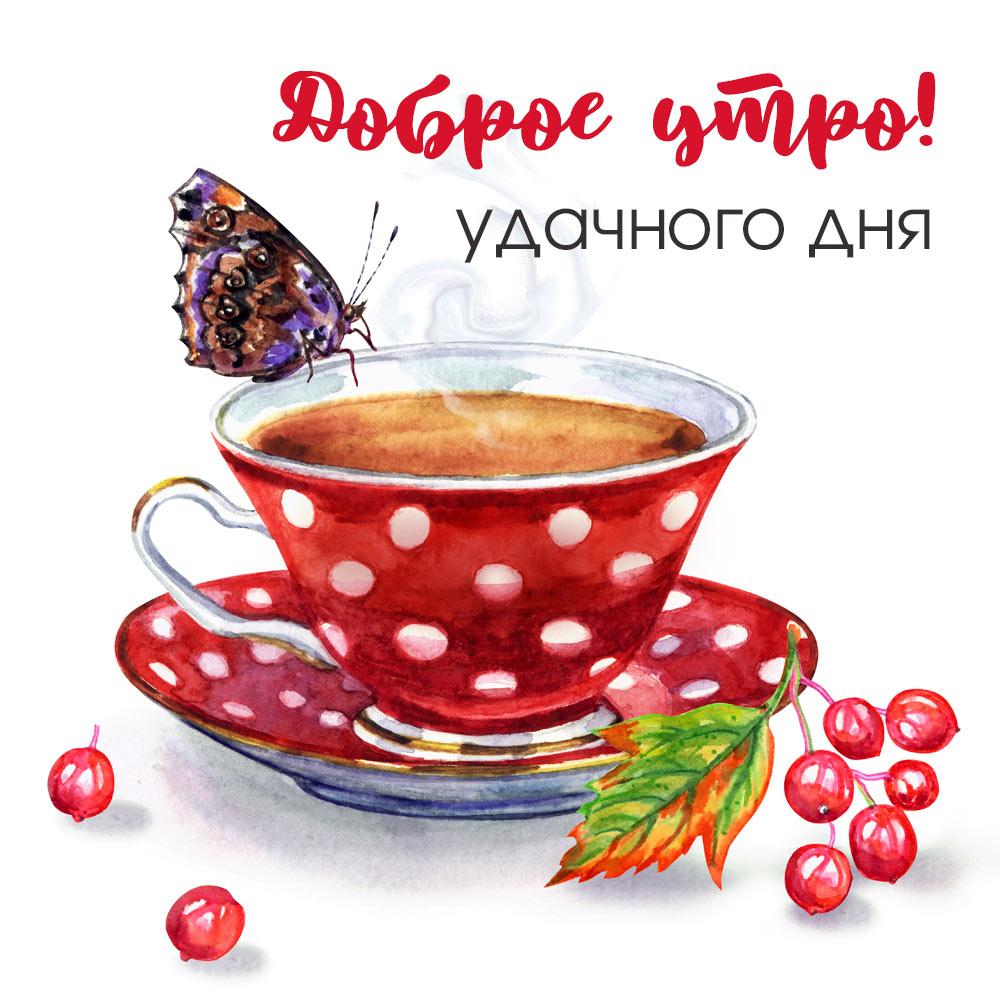 Картинка с чайной чашкой на блюдце и бабочкой на доброе утро.
