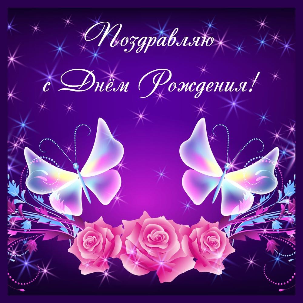 Фиолетовая картинка с розами и бабочками на день рождения.