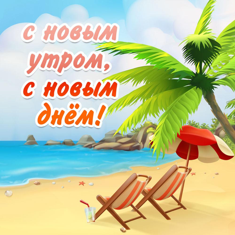 Шезлонги под зонтиком на морском пляже с пальмой.