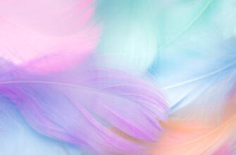 Красочный пастельный фон для фотошопа перья розового, пурпурного и фиолетого цветов.