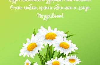 Зелёная открытка маме с днем рождения от сына с ромашками и текстом поздравления.