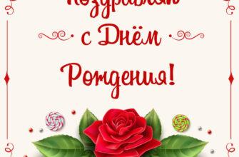 Поздравительная открытка женщине с днём рождения красная роза с зелёными листьями в прямоугольной рамке с текстом.