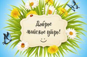 Картинка с текстом доброе майское утро на голубом фоне с травой, цветами и бабочками.
