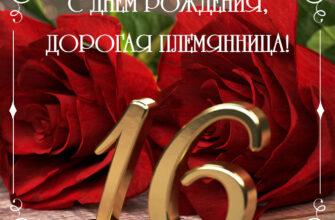 Фото цифры 16 с красными розами и текстом с днем рождения, дорогая племянница!