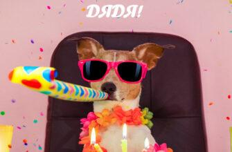 Смешная собака в солнечных очках с дудкой за праздничным столом.