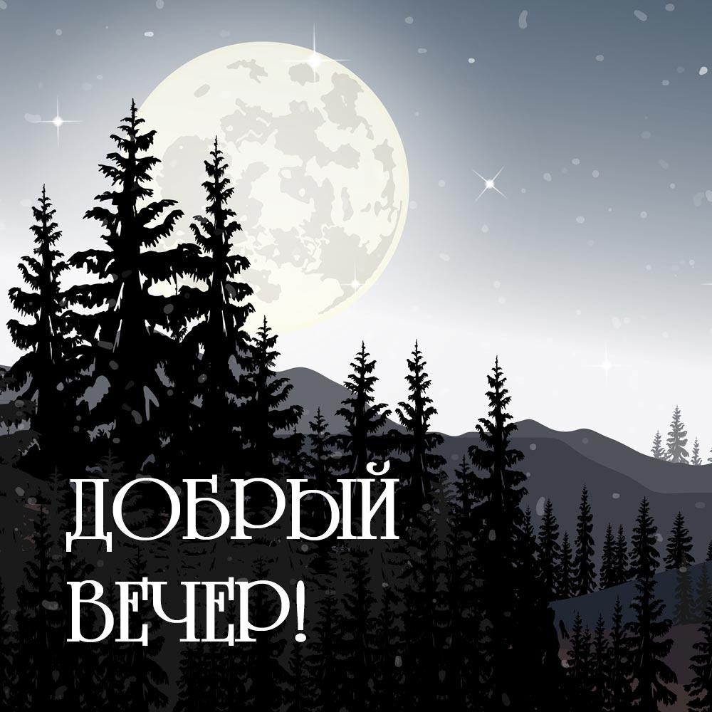 Луна над ночным лесом с надписью добрый вечер.