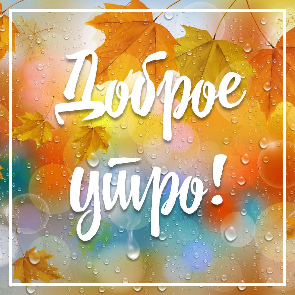 Картинка осень с жёлтыми кленовыми листьями, дождь и текст доброе утро!
